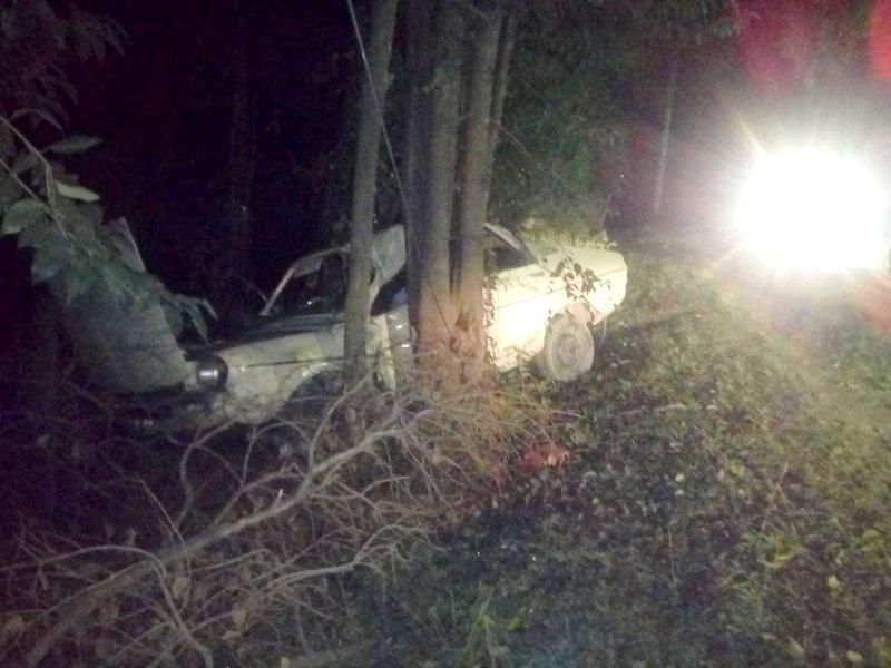 Despistó en la ruta y se estrelló contra los árboles
