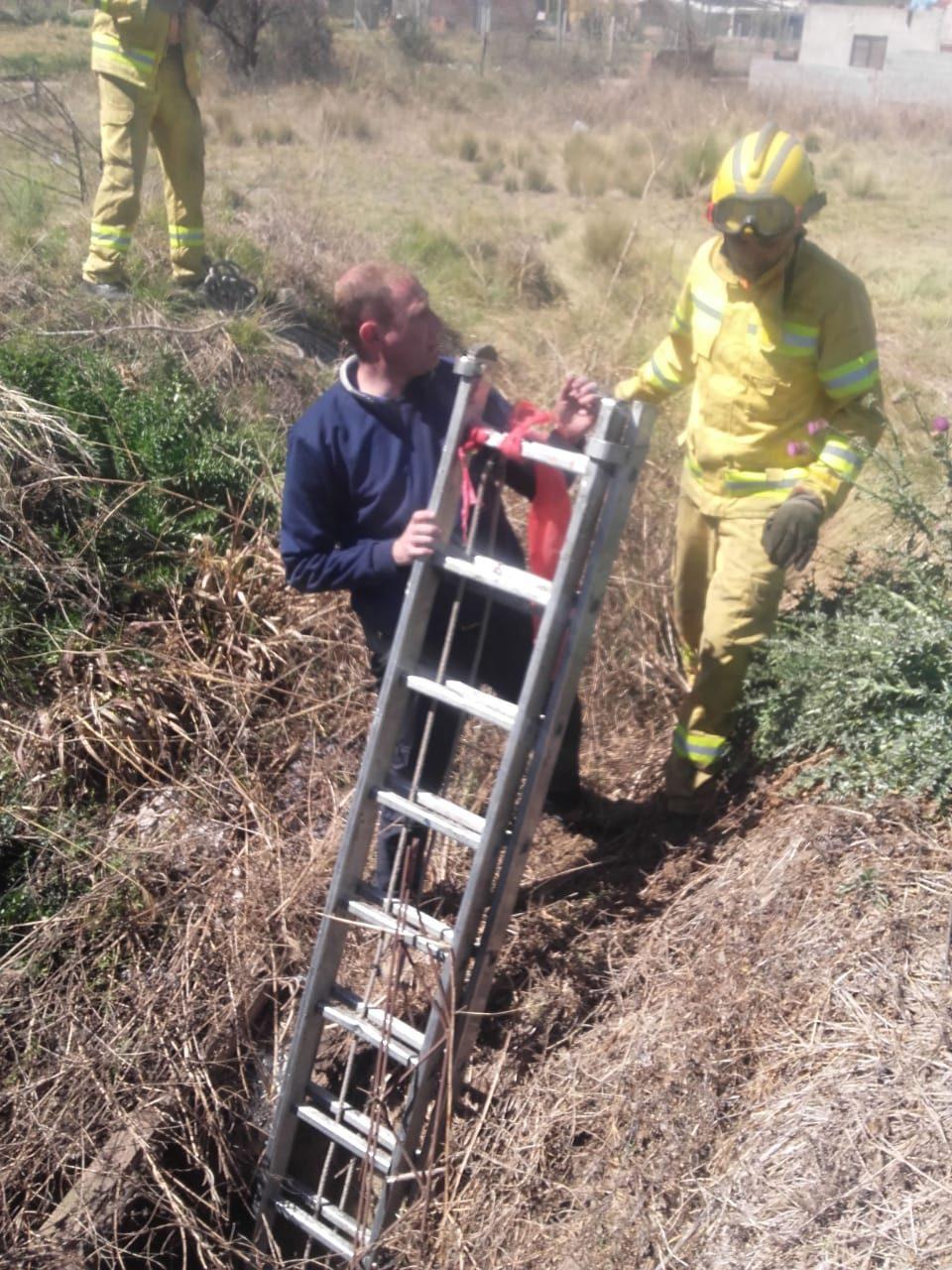 Bomberos rescataron a un perro, de un pozo de 4 metros