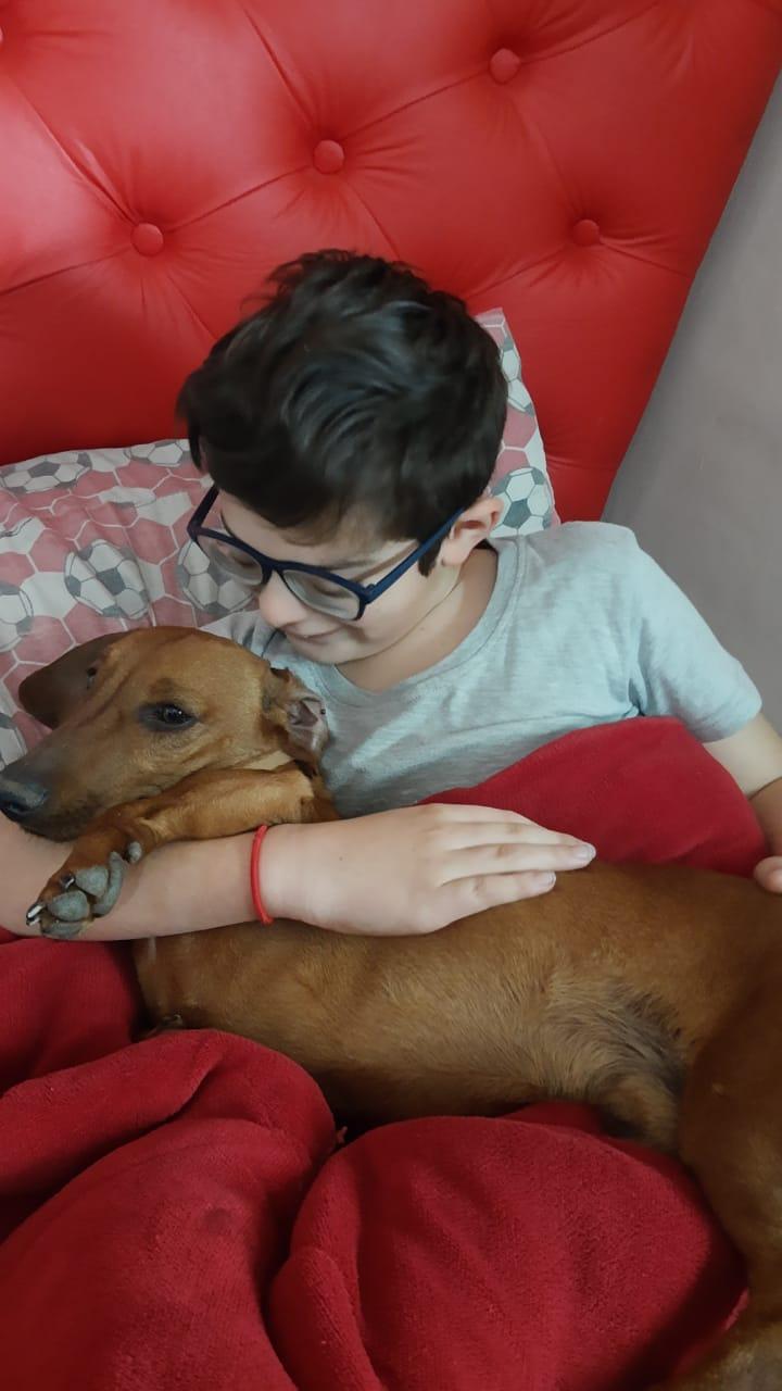 Dovi ya juega junto a Lautaro, su pequeño dueño de 9 años. Final feliz para una novela donde pasó de todo en un par de días.
