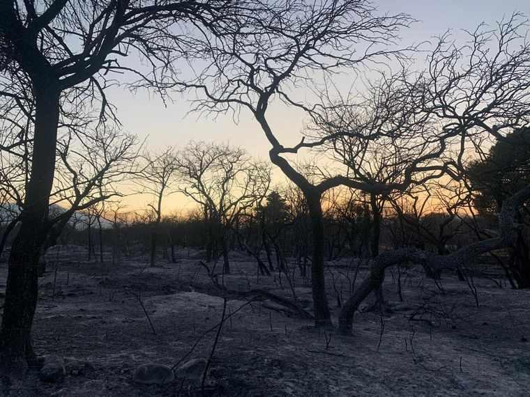 Luego de 13 días de lucha contra las llamas, los incendios fueron contenidos. Igual, alertan sobre condiciones climáticas desfavorables.