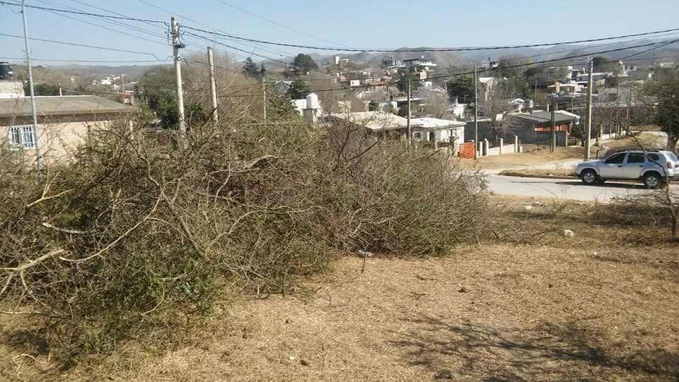 En tiempos en que debe apostarse por el ambiente, en barrio Liniers se desmonta una reserva. Una locura.