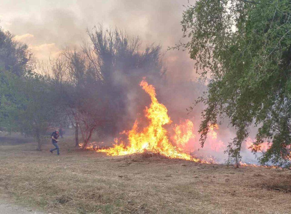 Alta Gracia y La Paisanita: El informe de los incendios