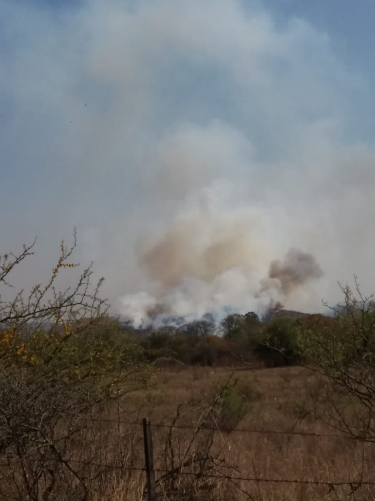 En la jornada del día de hoy, se activaron focos de incendio en la zona entre La Paisanita y Villa Los Aromos. Además, un pequeño foco en los fondos del campo de Turri.