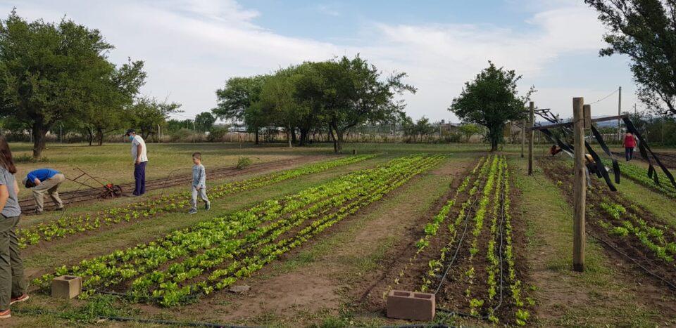 Comenzó a funcionar la Unidad Productiva de Agricultura Familiar en CRECER