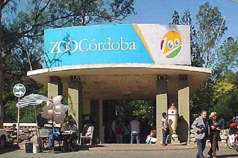 Zoo de Córdoba: murieron el camello y un hipopótamo bebé