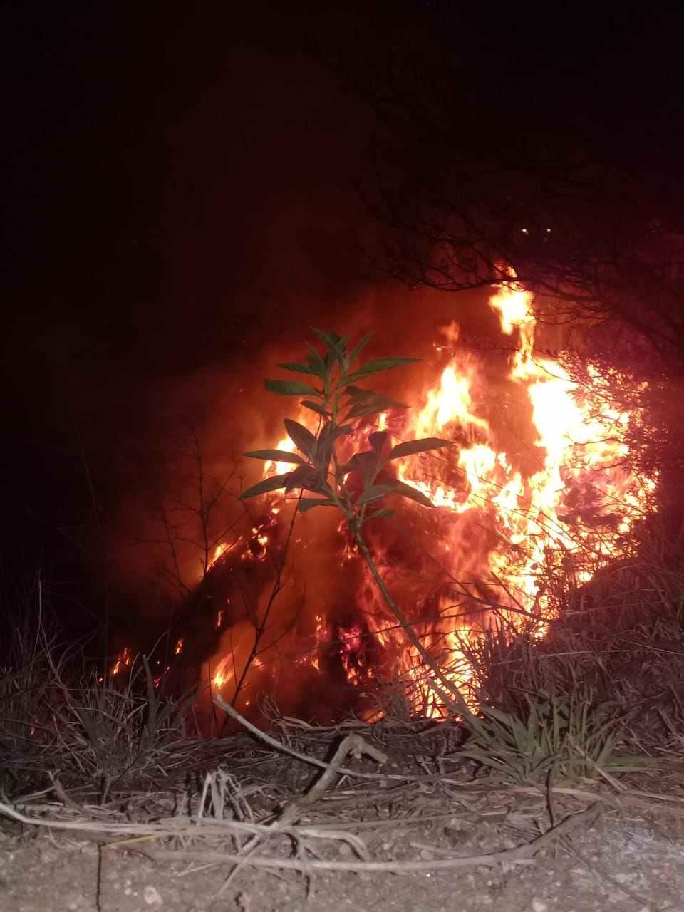 Reserva El Amanecer: noche de fuego y vecinos solidarios