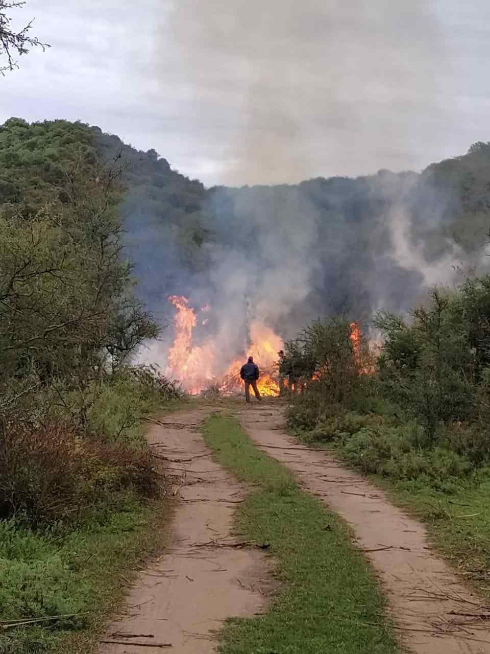 Los Aromos: cortarán la ruta en repudio por la quema no autorizada de poda