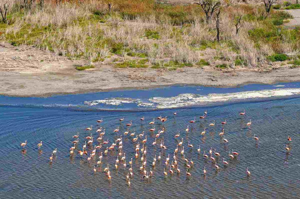 Elevaron informe técnico para la creación del Parque Nacional Ansenuza