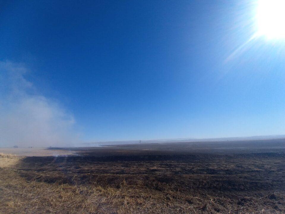 Un campo de Lagunilla fue víctima de un feroz incendio