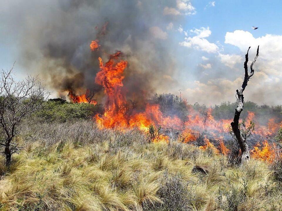 Contienen dos incendios intencionales y combaten un tercer foco en La Calera